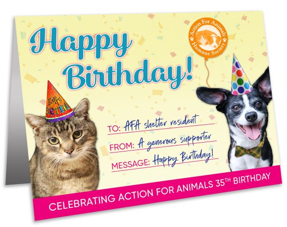 Send A Birthday Card To Shelter Animal And Help Us Celebrate More Birthdays
